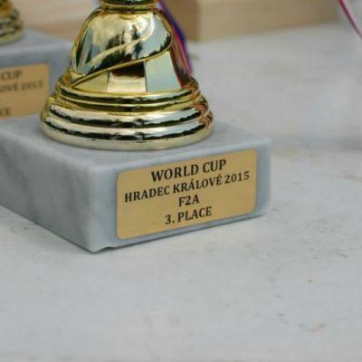 World Cup HK 2015